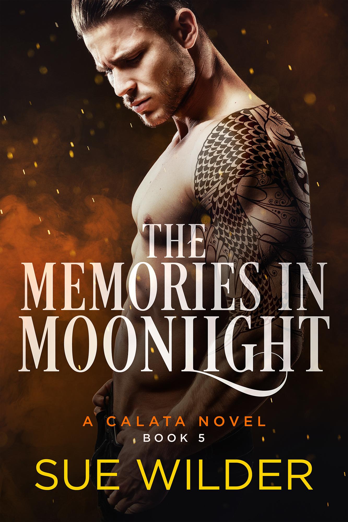 the-memories-in-moonlight-ebook-small-002